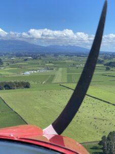 LLY Landing Grass strip