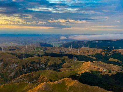 Manawatu Windmills